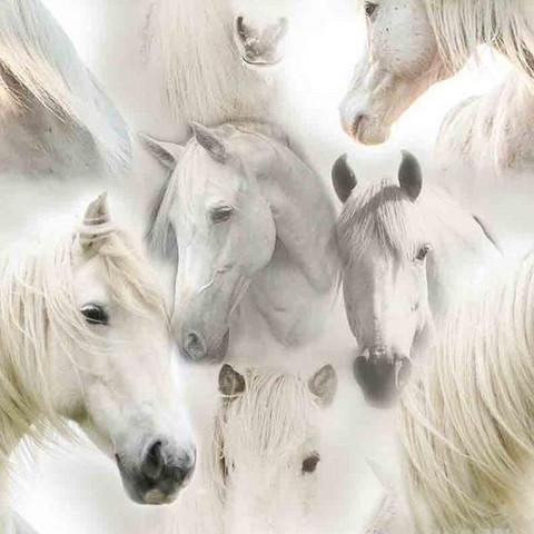 Digitrikoo: Hevoset, vaaleanharmaa