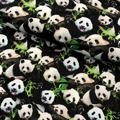 Digitrikoo: Pandat, musta