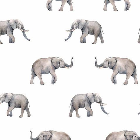 Luomupuuvillatrikoo: Elefantit, valkoinen