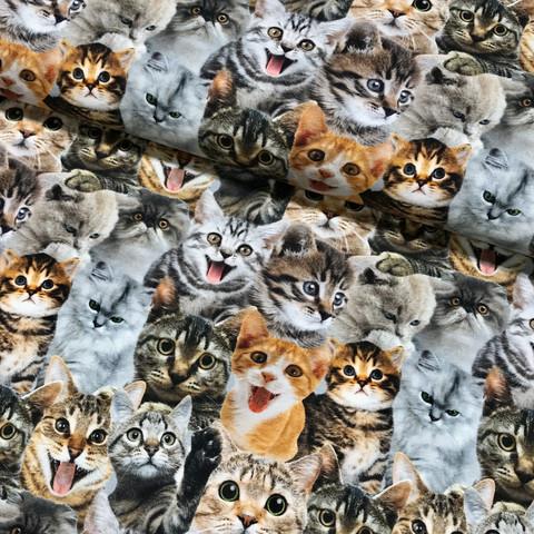Digitrikoo: Kissat, monivärinen - punaruskea - beige