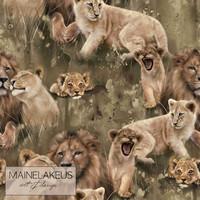 Mainelakeus: Royal Family, verkkari