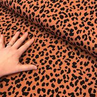 Trikoo: Leopard, konjakki