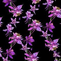 Hellin: Akileija Urheilulycra, musta - hot pink