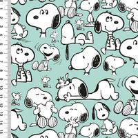 Snoopy trikoo: Snoopy, minttu