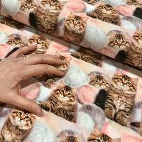 Luomupuuvillatrikoo: Kissat ja lankakerät