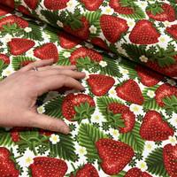 Luomupuuvillatrikoo: Isot mansikat, valkoinen