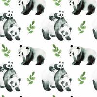 Luomupuuvillatrikoo: Pandat, valkoinen