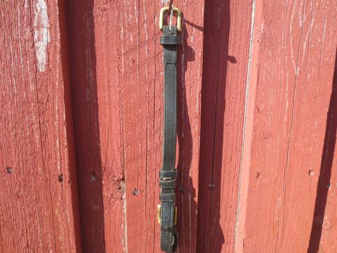 Yksinäinen musta poskihihna messinkisoljilla, pituus 30 cm