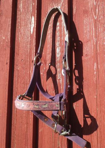 Liila-vaaleanpunainen riimu ja riimunnaru setti, SHETTIS/PONY