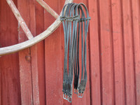 Nahkainen satulavyö, erikoinen malli, 130 cm