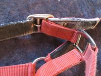 Rymyriimu, entinen punainen FULL