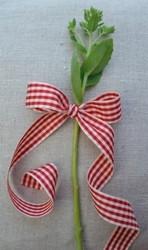 Classic square leveä punainen ruutunauha