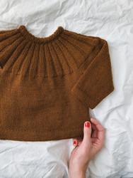 Haralds tröja, ruotsinkielinen ohje