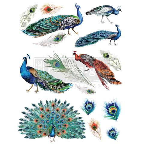 Siirtokuva - Peacock Dreams - 60 x 83 cm - Prima ReDesign