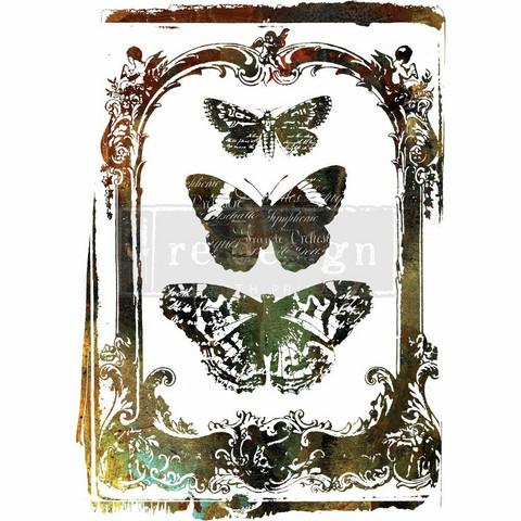 Siirtokuva - Butterfly Frame - 55 x 76 cm - Prima ReDesign