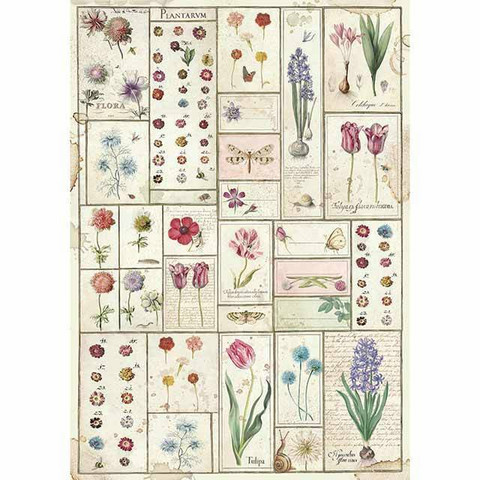 Decoupage-arkki - Spring Botanic Herbarium - A4