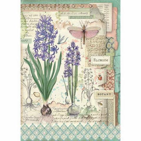 Decoupage-arkki - Botanic Bulbs - A4