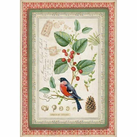 Decoupage-arkki - Winter Botanic Little Bird on Holly - A4