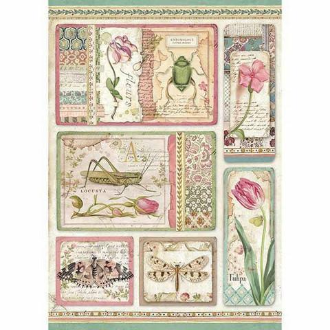 Decoupage-arkki - Botanic Cards - A4