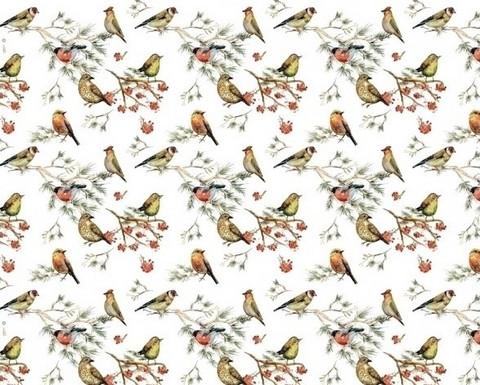 Paperi - Linnut - alk. 1 metri