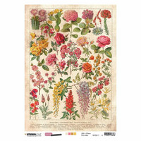Decoupage-arkki - A4 - Just lou botanical nr.11