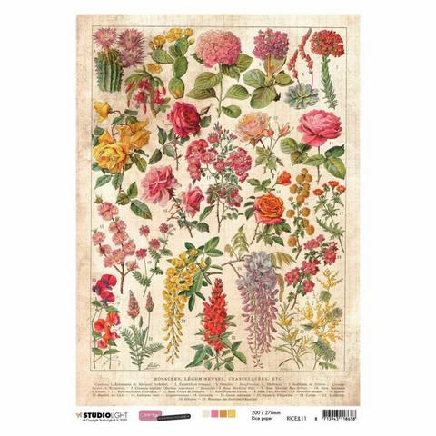 Decoupage-arkki - A4 - Just lou botanical nr.11