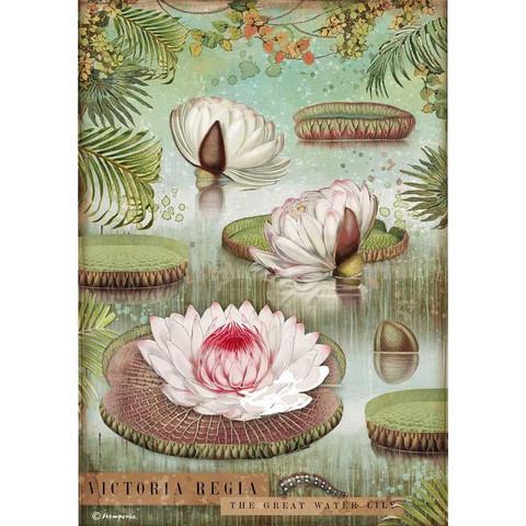 Decoupage-arkki  A4 - Amazonia Water Lily