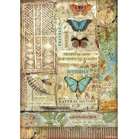 Decoupage-arkki - A4 - Amazonia Butterfly