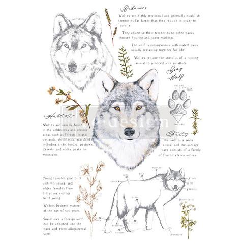 Siirtokuva - 60 x 88 cm - Gray Wolf - Prima Redesign Decor Transfer