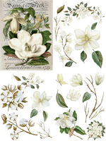 Siirtokuva - 64 x 81 cm - Magnolia Garden - Belles and Whistles