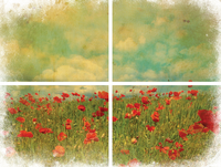 Siirtokuva - 61 x 81 cm - Field of Flowers - Belles and Whistles