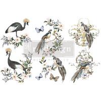 Siirtokuva - 45x30 cm - Rare Birds - Prima Redesign Decor Transfer