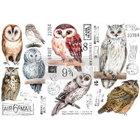 Siirtokuva - 45x30 cm - Owl - Prima Redesign Decor Transfer