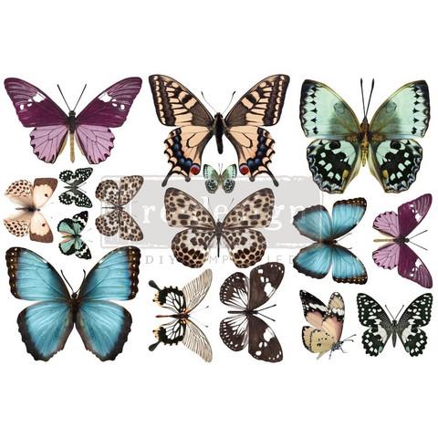 Siirtokuva - 45x30 cm - Butterfly - Prima Redesign Decor Transfer