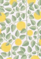 Appelsiini-tapetti, Pihlgren ja Ritola