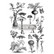 Siirtokuva - Fungi Forest - 60 x 88 cm - Prima ReDesign