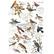 Siirtokuva - Postal Birds - 60 x 88 cm - Prima Redesign