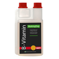 WorkingDog B-vitamiini 500ml