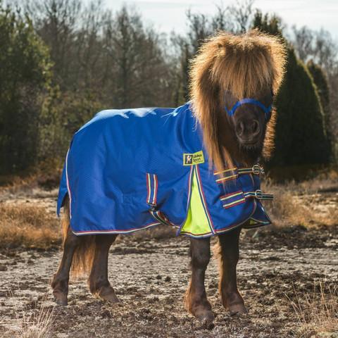 Globus Mini sade- ja ulkoloimi pienille poneille 100g