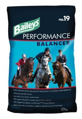 Baileys Performance Balancer