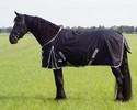 XL-loimet, roteville hevosille