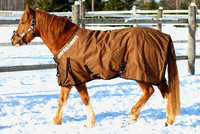 Ulkoloimi 150 g Horse Smart