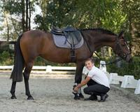 QHP Luc Junior poikien ratsastushousut