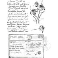49 and Market - Gabi's Postcard From Paris, Leimasetti