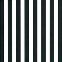 Canvas Corp - Black & White Big Stripe Cardstock 12