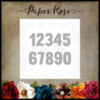 Paper Rose - Numbers, Stanssi