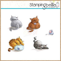 Stamping Bella - Set of Kitties, Leimasetti