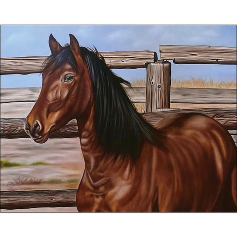 Collection D'Art - Mustang, Timanttimaalaus, 48x38cm