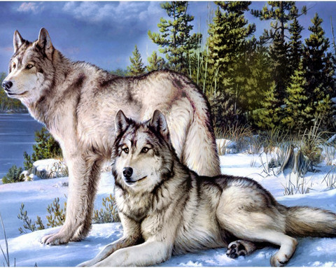 Collection D'Art - Wolves, Timanttimaalaus, 48x38cm
