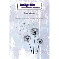 IndigoBlu - Dandelions, Leimasetti